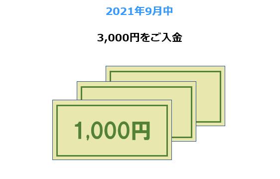 2021年9月中 3,000円をご入金
