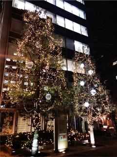 中央経済社前のクリスマスツリー