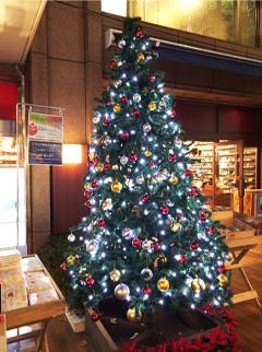 三省堂書店のクリスマスツリー