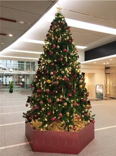 神保町三井ビルディングのクリスマスツリー